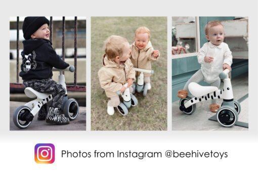 Zebra Bike photos from Instagram