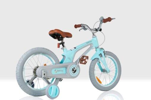 Vintage Bicycle 3