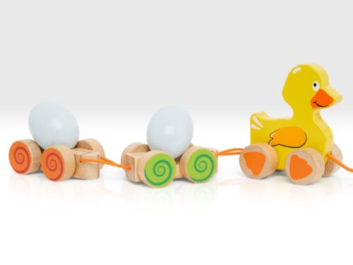 Duck and Egg Pull Along Toy